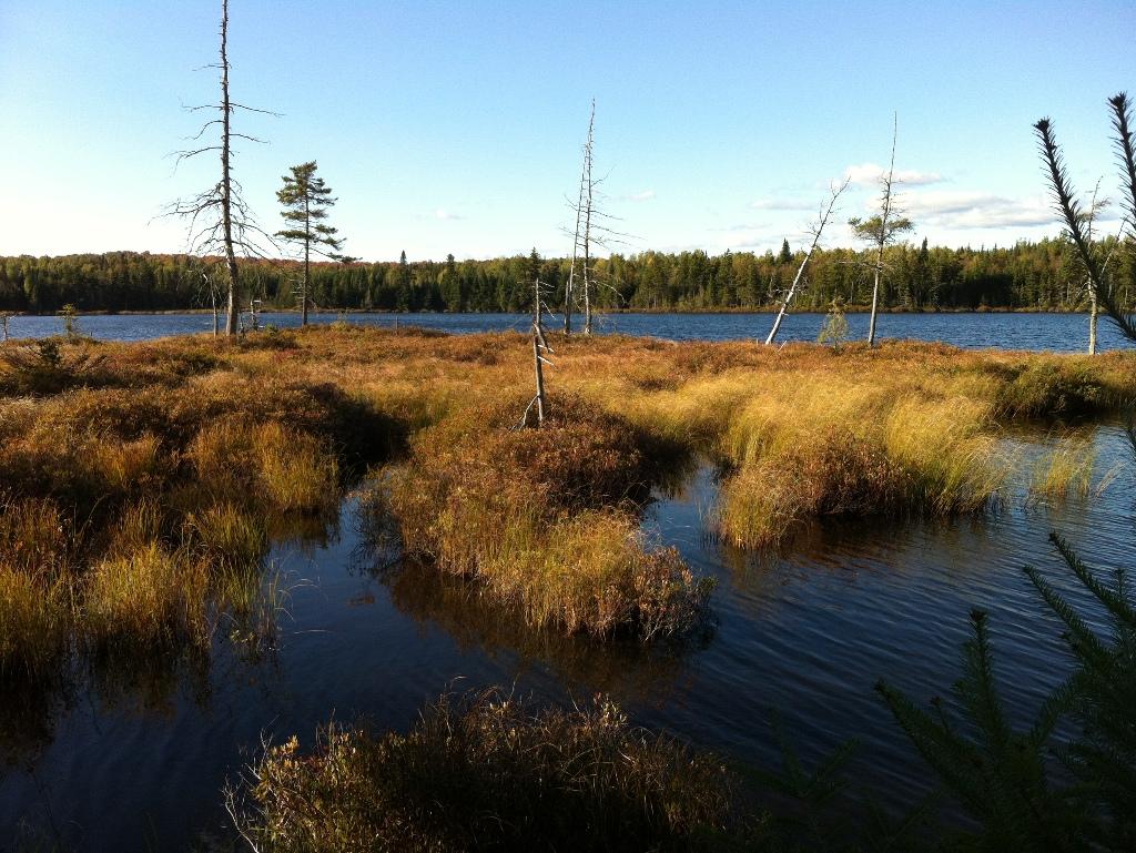Conduire des bassins vko et les rapports sur la pêche